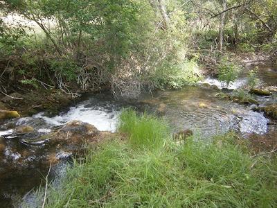 Los saltos de agua junto a la Balsa, Campillos Sierra, Cuenca