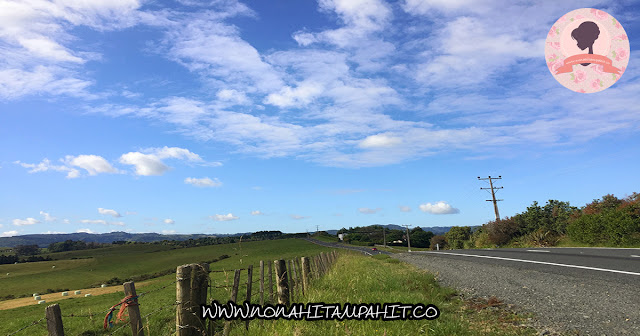 Matakana_Road_New_Zealand_Nona_Hitam_Pahit