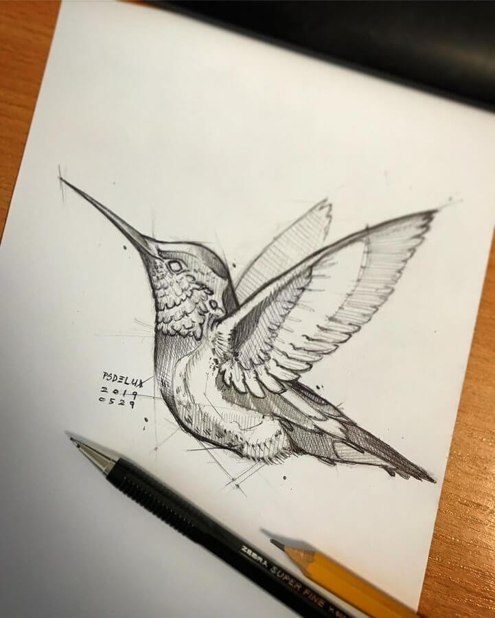 10-Hummingbird-Psdelux-Fineliner-Ink-and-Pencil-Animal-Drawings-www-designstack-co