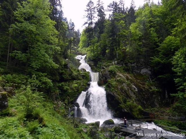 Cascadas de Triberg, Selva Negra, Alemania