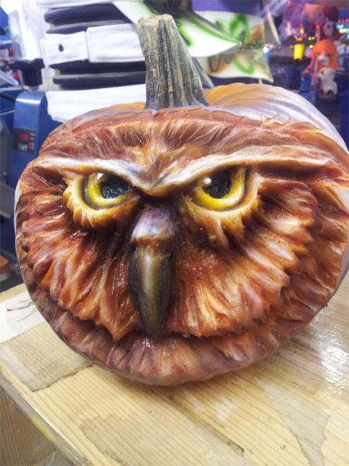 My Owl Barn Owl Jack O Lanterns To Inspire