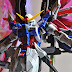 Painted Build: DM 1/100 Destiny Gundam Glossy Finish