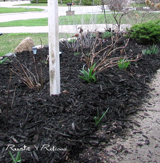 How to maintenance garden and flower beds