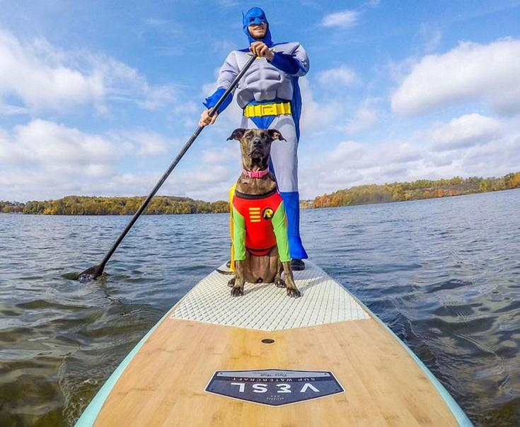 Σκύλος Άνθρωπος και σκύλος Αμερική