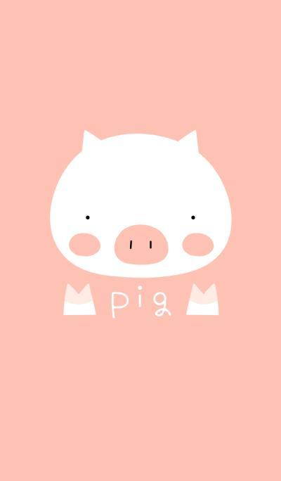 pig white