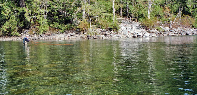 Der Gold River auf Vancouver Islan