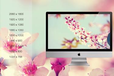 Spring Wallpaper Pack - Cleodesktop I Customized Desktop