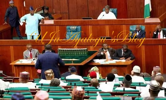 House of Representatives takes final decision on cattle colonies in Nigeria, tells FG what to do about ranching