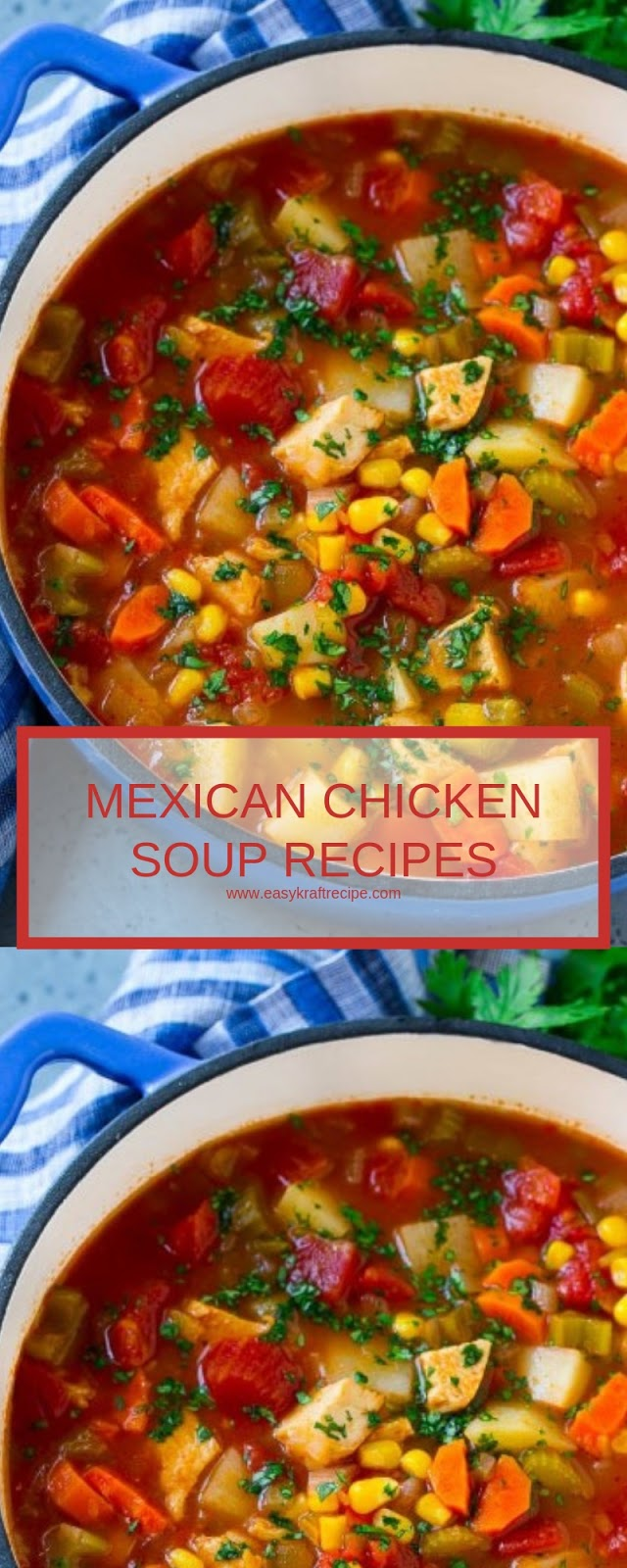 MEXICAN CHICKEN SOUP RECIPES