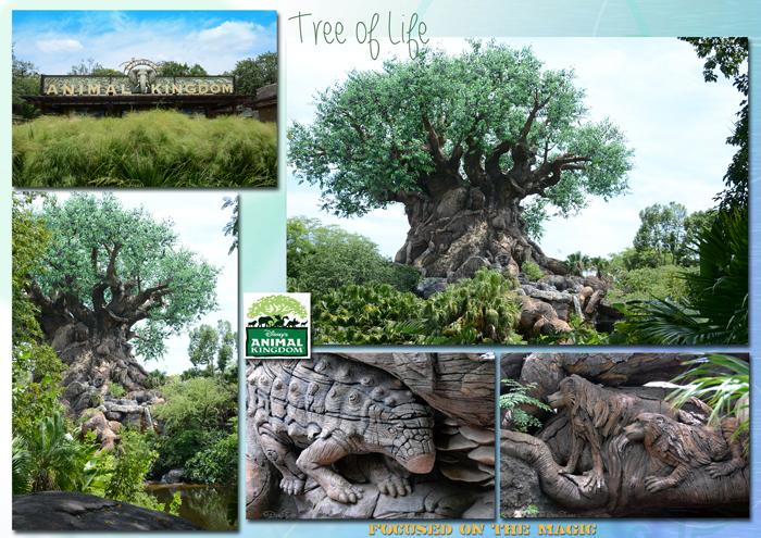 Tree of Life, Animal Kingdom Park, Walt Disney World, Florida