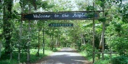 Hutan Kota Untan, Tempat Cocok Untuk Nyantai Saat di Pontianak