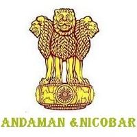 Andaman and Nicobar jobs,latest govt jobs,govt jobs,latest jobs,jobs,Light Vehicle Driver jobs