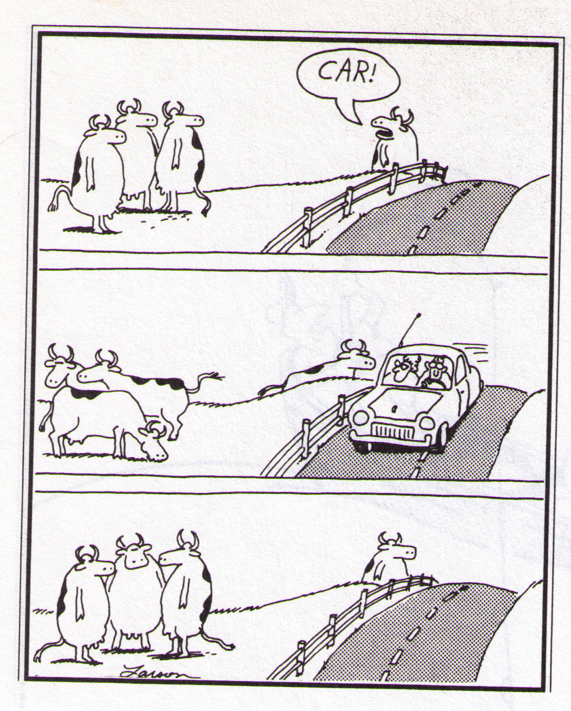 crazy remote camera deer footage or when far side comics come to life