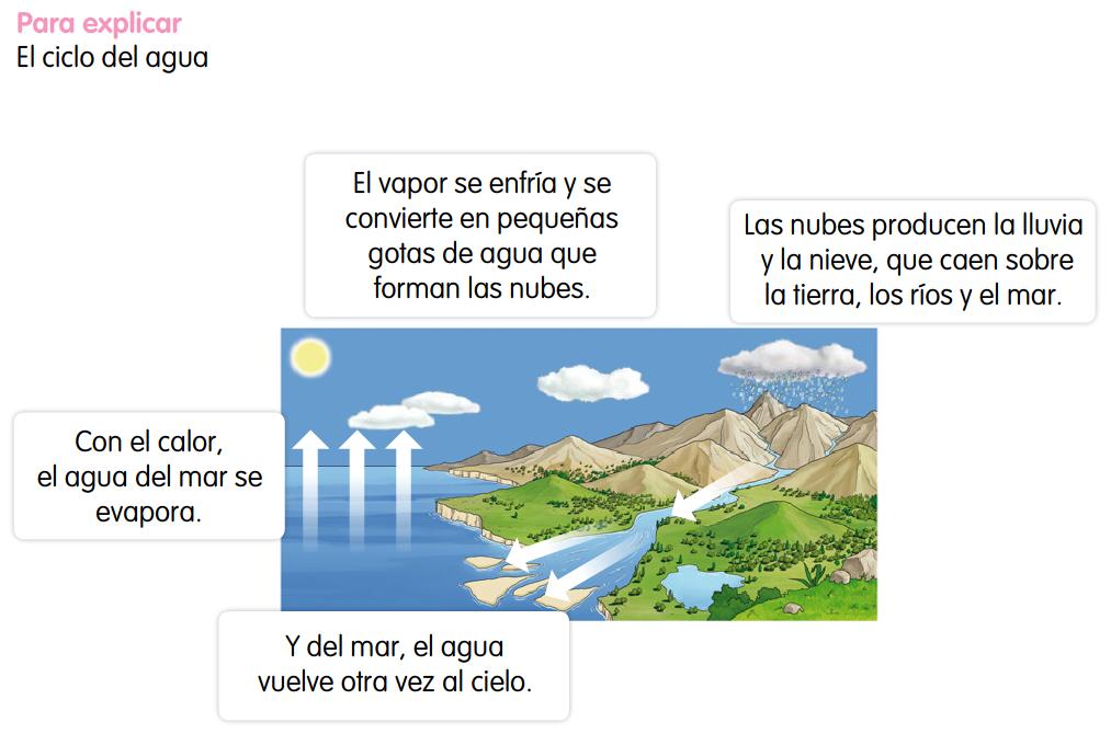 http://www.primerodecarlos.com/SEGUNDO_PRIMARIA/enero/tema2/actividades/cono/ciclo_agua_santillana/ciclo_del_agua_contenido.swf