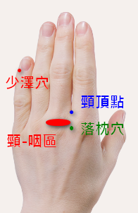 手掌穴道 - 落枕穴道按摩穴位 - 少澤、落枕、頸頂點、頸-咽區