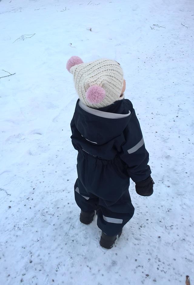 kuorihaalari talvella, perfluoratut yhdisteet