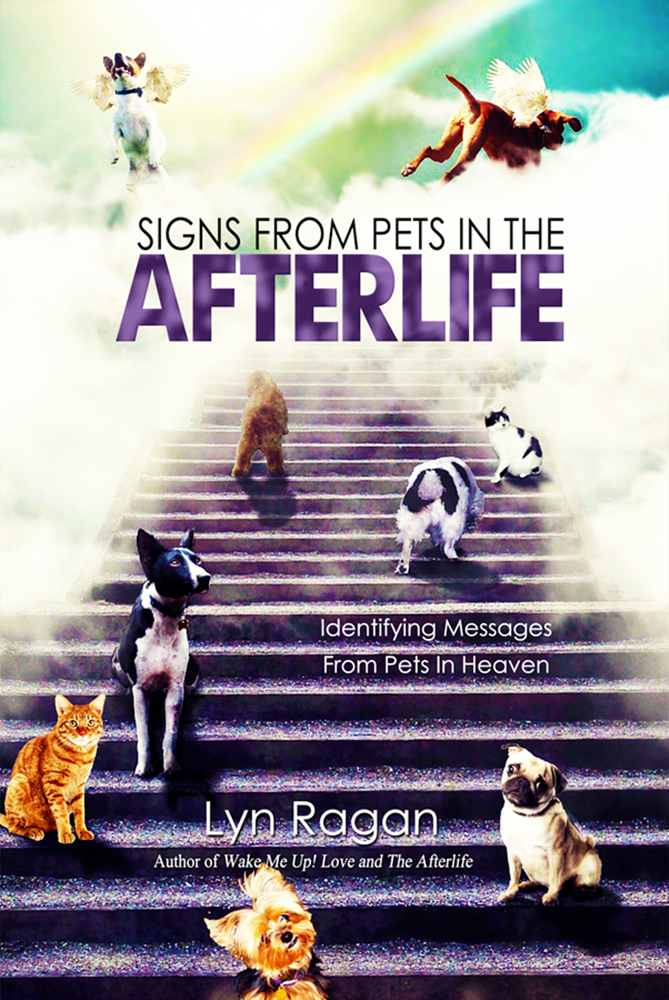 Signs From Pets In The Afterlife Book