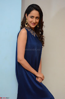 Pragya Jaiswal in beautiful Blue Gown Spicy Latest Pics February 2017 022.JPG