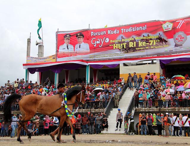 Promosikan Wisata Gayo, Disbudpar Aceh Apresiasi Lomba Pacuan Kuda Tradisonal