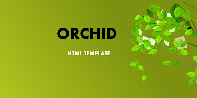 Orchid HTML Template