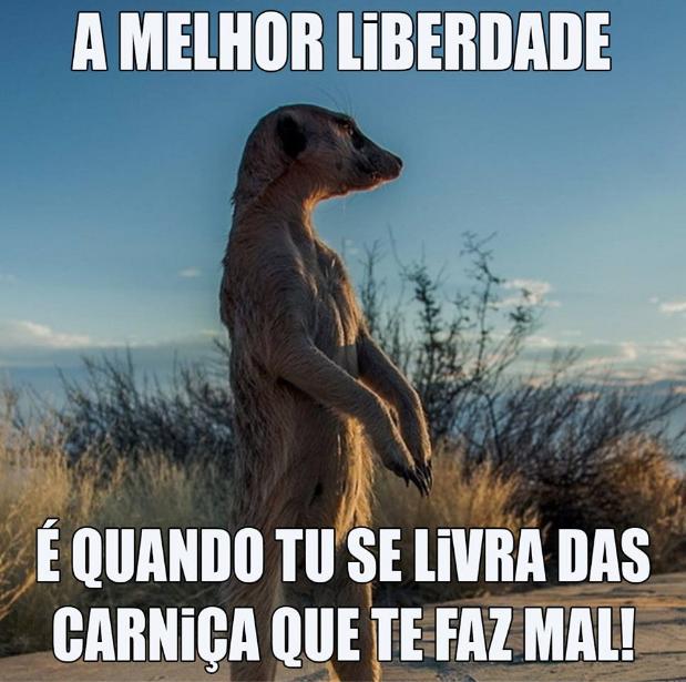 liberdade.png (619×615)
