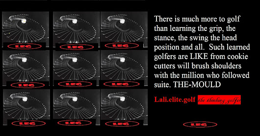 the molded - learned - trained golfer
