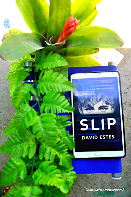 Slip (Slip #1) by David Estes | A Book Review by iamnotabookworm