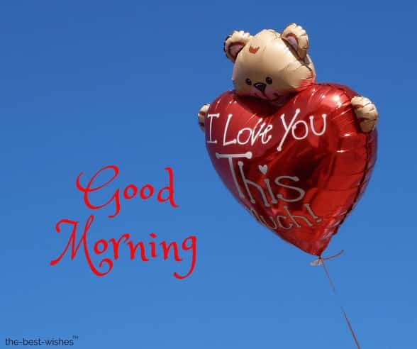 i love you with teddy good morning