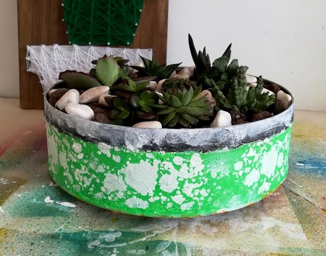 como-reciclar-con-plantas
