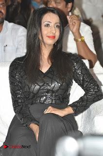 Happy Birthday Telugu Movie Audio Launch  0003