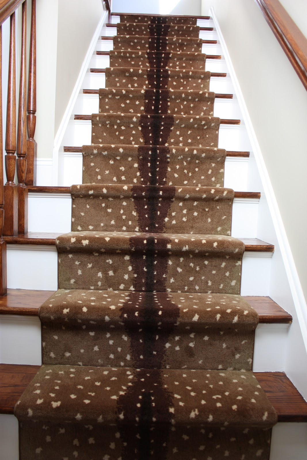 Lighting Basement Washroom Stairs: Inspiration In Stages : FOR THE HOME: Antelope Stair Runner