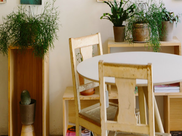 Bringing A Fresh Outlook To Your Space With Artificial Plants