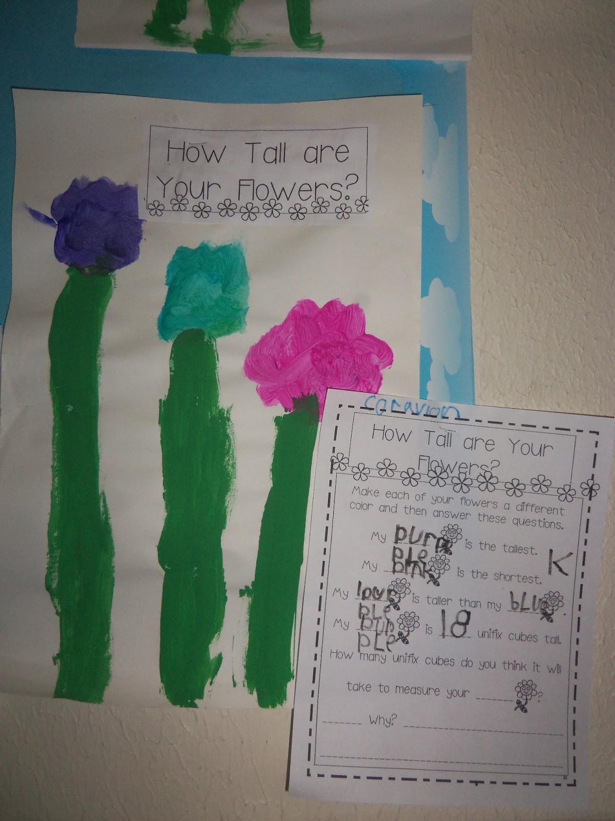 Kinder Garden: Mrs. Wood's Kindergarten Class: Flower Measurement