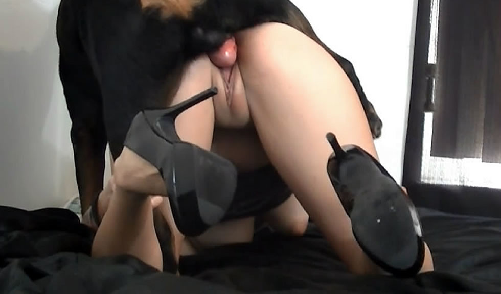Порно с животными видео ролики с животными секс зоофилов