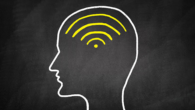 Un científico asegura que los cerebros humanos se comunican con una especie de wifi