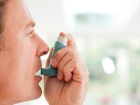 Faktor Penyebab Penyakit Asma