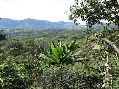Brisas del Cauca, Marsella, Risaralda, Colombia.