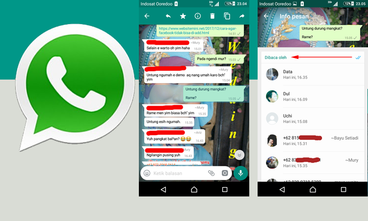 Cara Melihat Siapa Pembaca Pesan Yang Anda Kirim Di Grup WA WhatsApp