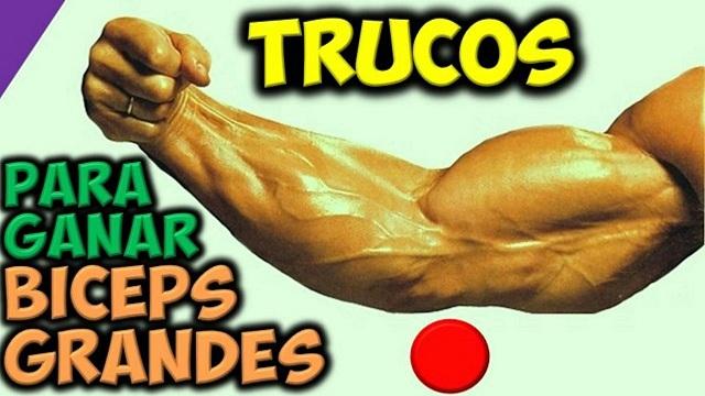 Trucos Para Desarrollar Biceps Grandes y Fuertes Ganar Brazos