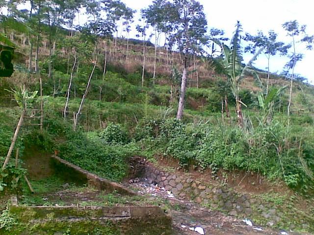 Foto%25285350%2529 Jual Tanah Di Puncak 2, Murah Jual tanah di cipanas jual tanah di puncak jual tanah di puncak2