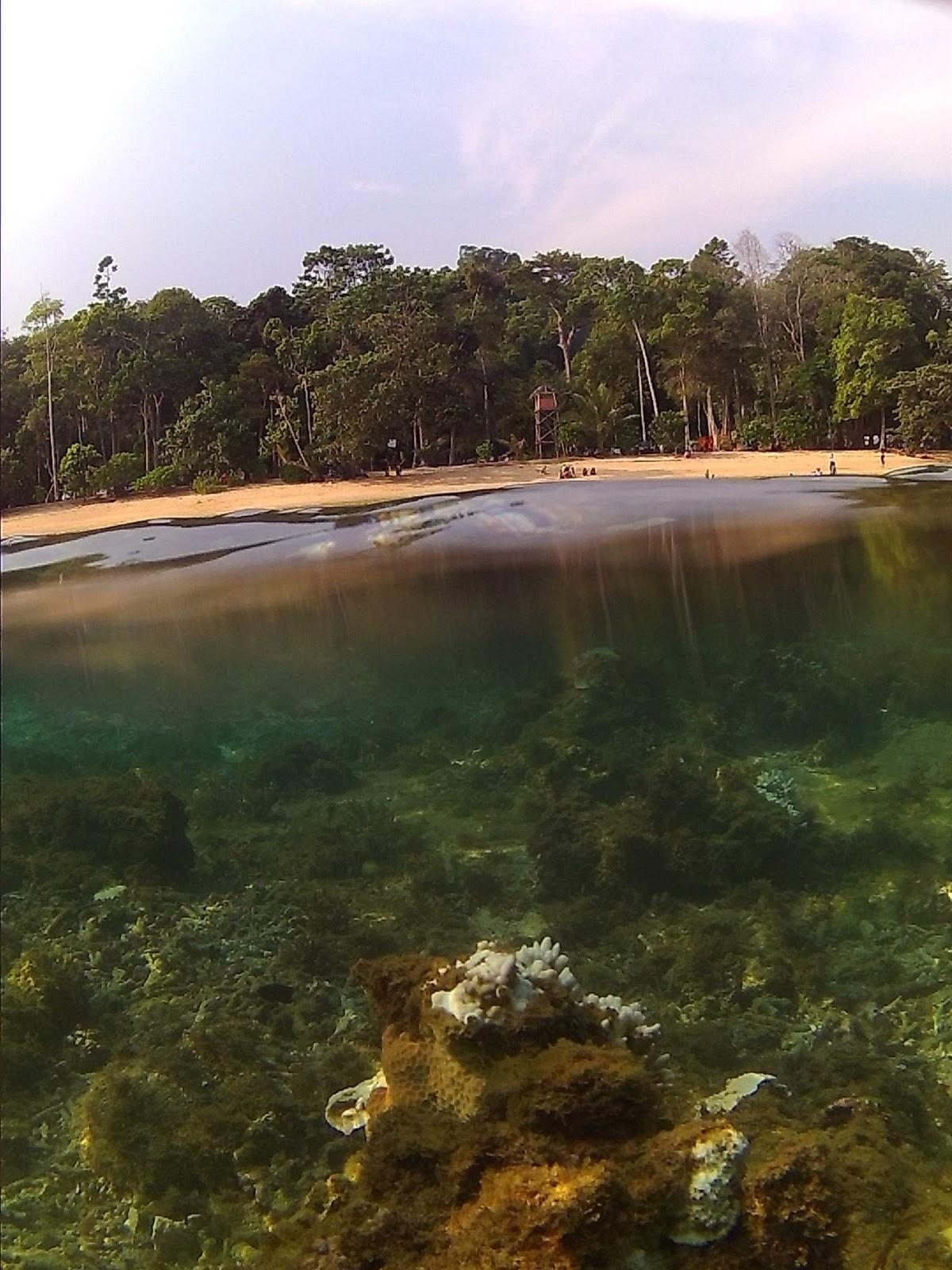 Hasil gambar untuk pantai kondang merak