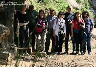 http://www.biodiversidadvirtual.org/insectarium/III-Testing-de-Biodiversidad-Punto-BV-Espacio-Pirineos-img794199.html