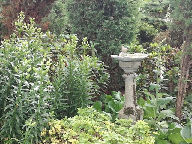 kamienna ozdoba w ogrodzie, poidełko