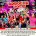 CD ARROCHA VOL.05 2019 - DJ ROGER MIX PRODUÇOES