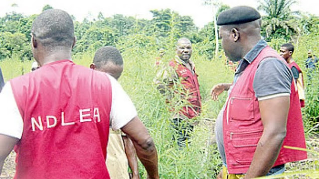3 NDLEA Officers Killed By Unknown Gunmen In Okene