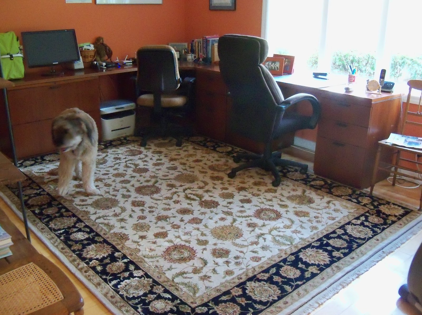 office chair rug oversized sling brandon oriental rugs home solution from