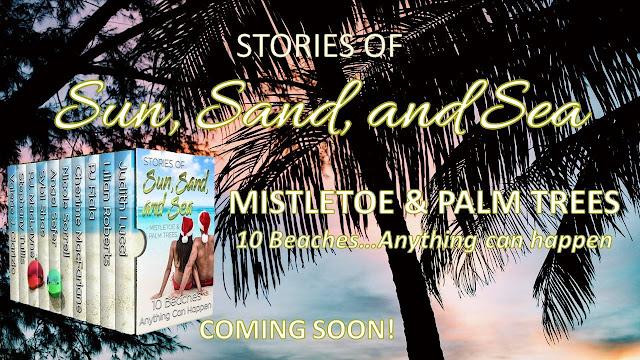 Mistletoe Palm Trees Romance Author Pj Fiala