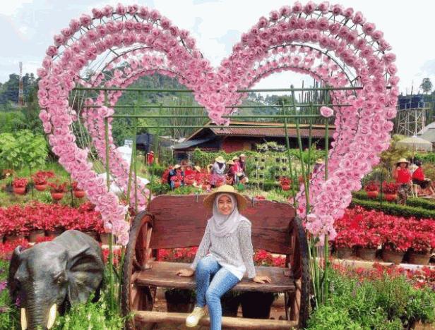 Wisata Taman Bunga Begonia