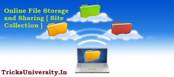 Online File Storage and Sharing Site Collection