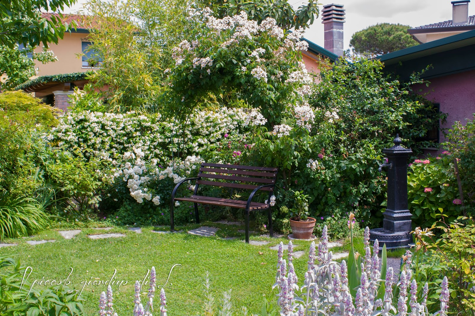 Il piccolo giardino di l angoli rigogliosi del giardino - Angoli di giardino ...